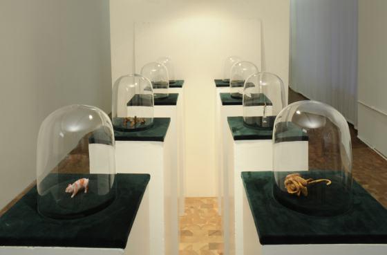 Roland Albrecht - Museum der Unerhörten Dinge